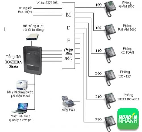 Giải pháp tổng đài điện thoại nội bộ